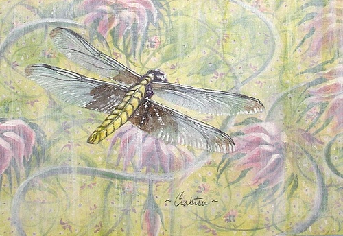 240 best images about dragonfly on pinterest photographs for Tattoo shops in yuba city