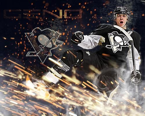 Pittsburgh penguins win 3-1 against the Florida Panthers with a record of 22-6-4 with goals scored by Nick Spaling, Derrick Pouliot, and Sidney Crosby, and amazing saves by the ninja, Marc-Andre Fleury. 12/20/14