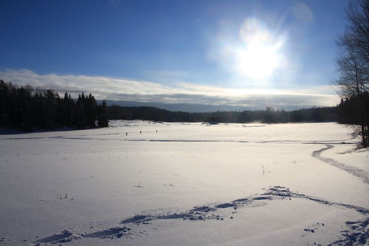 Cross country skiing tracks in Färna