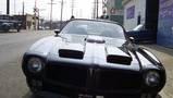 Corvette Summer Trans Am