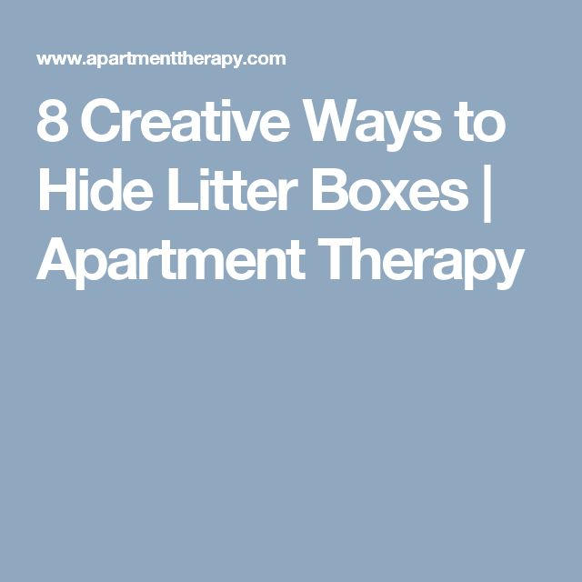 8 Creative Ways to Hide Litter Boxes | Apartment Therapy