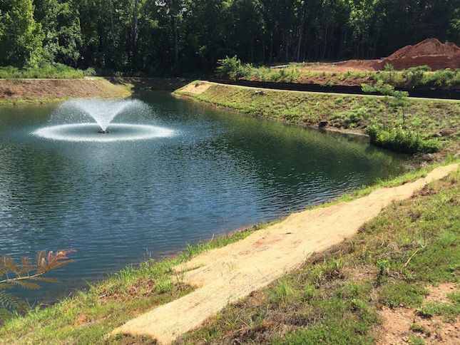 152 best blog for platinum ponds and lake management for Farm pond maintenance