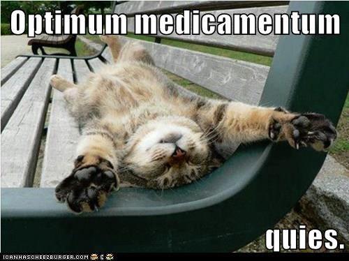 Optimum medicamentum quies.    Rest is the best medicine.