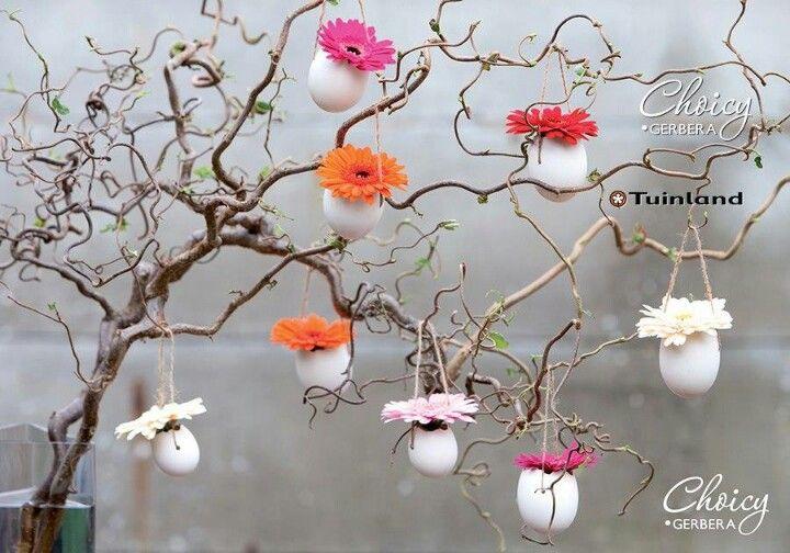 lege eierschalen met bloem in takken