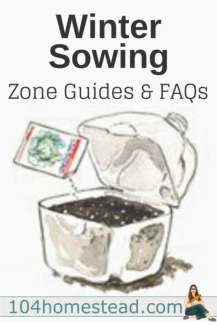 Winter Sowing: How do I know what to sow and when to sow? What kind of containers can I use? What about watering? I've got the answers to these questions and more.: