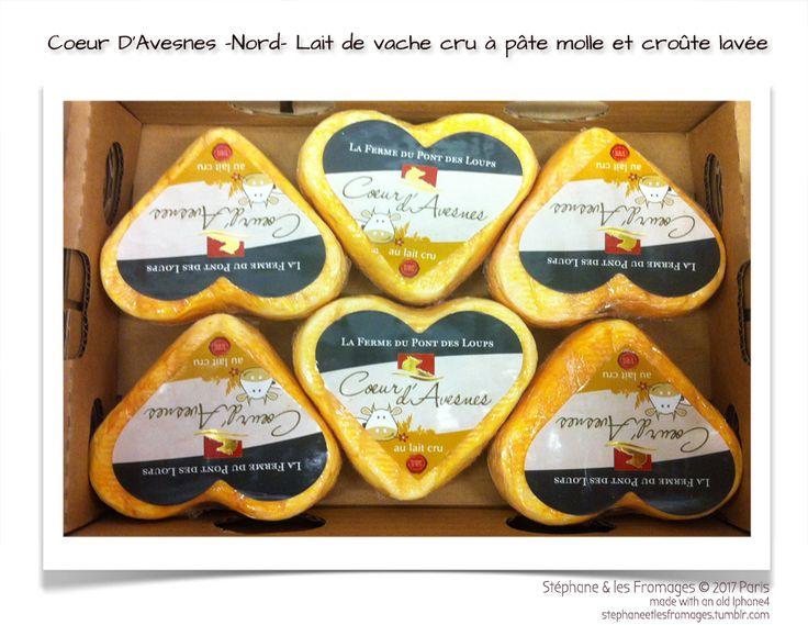 Le Cœur d'Avesnes (ou Cœur d'Arras) est un fromage au lait de vache cru à pâte molle et croûte lavée de la famille du Maroilles. Il contient 23% de matière grasse sur le poids total, pèse dans les 180 grammes et se distingue par son odeur prononcée, sa croûte orangée et sa forme de cœur. ♡ fromage ♡ cheese ♡ Käse ♡ formatge ♡ 奶酪 ♡ 치즈 ♡ ost ♡ queso ♡ τυρί ♡ formaggio ♡ チーズ ♡ kaas ♡ ser ♡ queijo ♡ сыр ♡ sýr ♡
