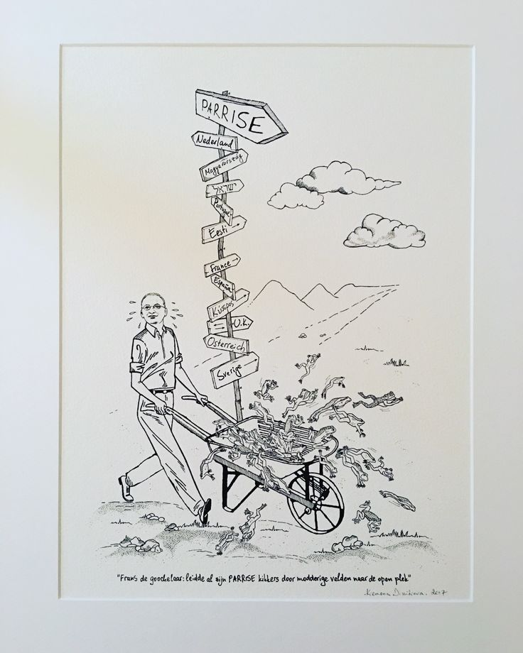 My latest commission - a cartoon, which was commissioned as a gift for my client's colleague... the colleague in question has been making jokes that coordinating a particular project was like herding frogs into a wheelbarrow, hence the illustration. And as I like humour... I accepted the challenge immediately!!!