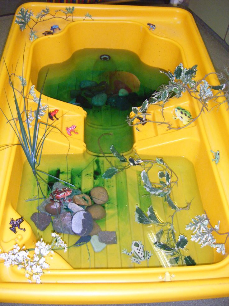 "Pond small world ("",)"
