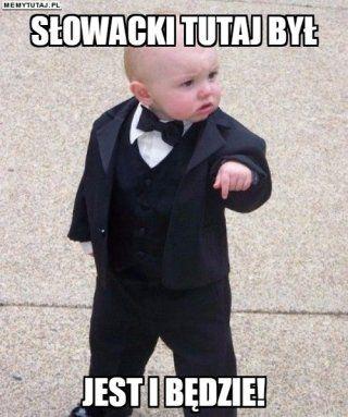 Znalezione obrazy dla zapytania słowacki memy