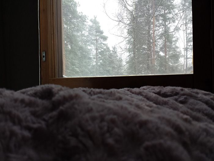 My blogpost number 1. #blogs #to #follow #winter #home #cozy #myday #lifestyle #style