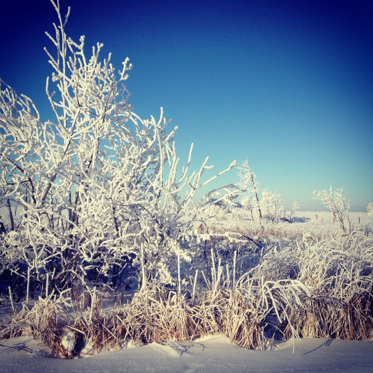 Saskatchewan winters