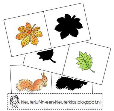 Vormenspel: Taalactiviteit schaduw koppelen. Thema 'Herfst' (met tekeningen van Dagmar Stam)