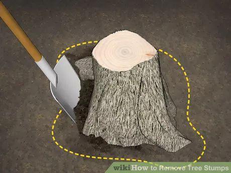 Image titled Remove Tree Stumps Step 1
