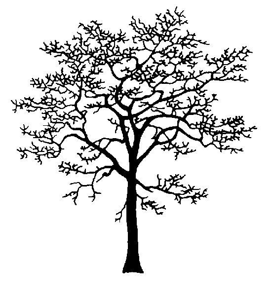 555 best images about plasma cut trees on pinterest. Black Bedroom Furniture Sets. Home Design Ideas