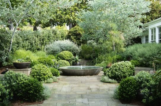 lush courtyardFront Gardens, Water Features, Gardens Fountain, Green Gardens, Flower Gardens, Patios Ideas, Outdoor Gardens, Gardens Design, Shades Of Green