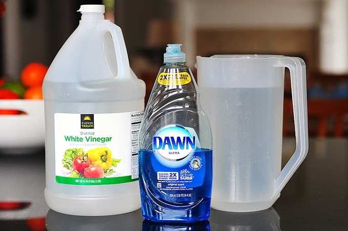 THE BEST HOMEMADE WINDOW CLEANER:  2 cups water 1/4 cup white vinegar 1/2 teaspoon dish detergent