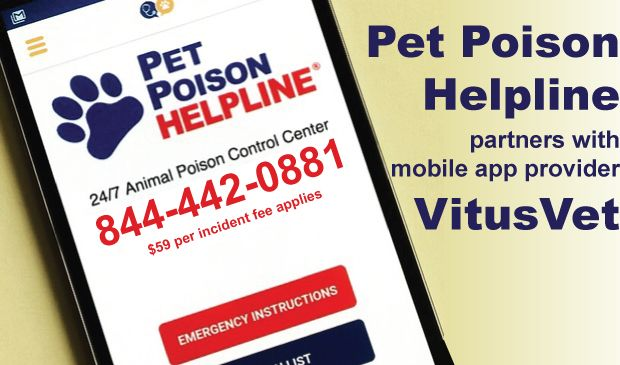 Pet Poison Helpline, a 24-hour animal poison control center for pet owners and veterinarians dealing with a poisoned pet.