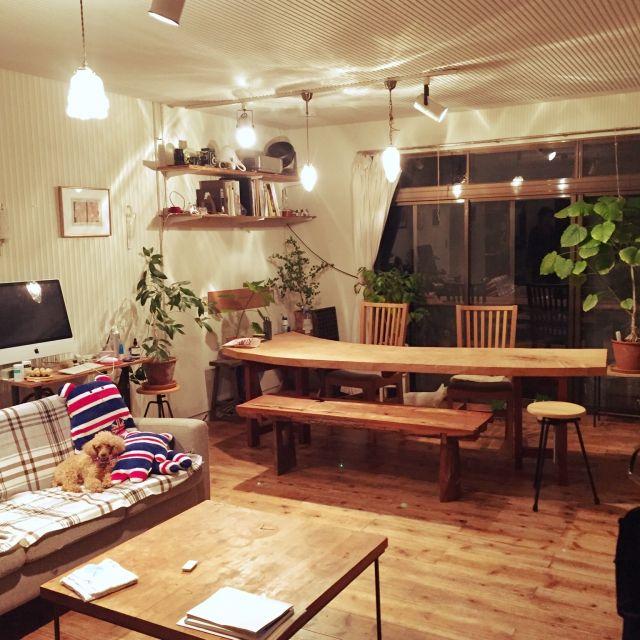 ru-kojiさんの、Overview,観葉植物,照明,ナチュラル,雑貨,アンティーク,ハンドメイド,DIY,カフェ風,多肉植物,男前についての部屋写真