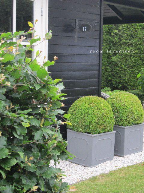 Zomer in de tuin      De zomer heeft flinke kuren, dan weer nat en dan weer droog. Vandaag is het lekker zonnig en zit ik met mijn ...