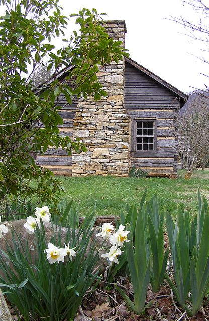 Carson Cabin in Spring  Centerpiece of the Big Ivy Historical Park, Barnardsville, NC.