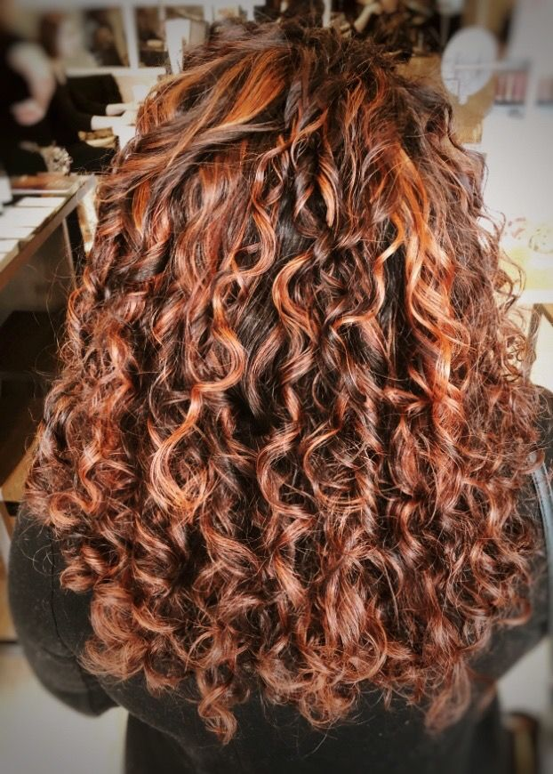 Curly Red Hair With Copper Highlights In 2020 Red Curly Hair Dyed Curly Hair Colored Curly Hair