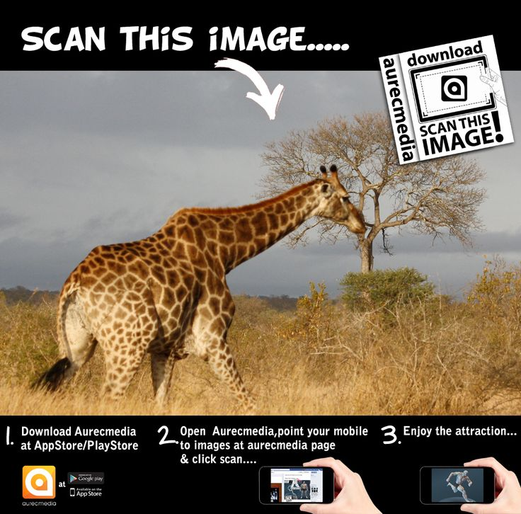 Download aurecmedia and scan this image