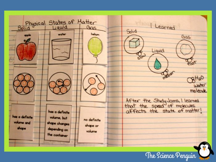 States of Matter Science Notebook: Sort and Output Activity