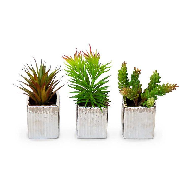 plantas artificiais suculentas no vaso prateado ondulado