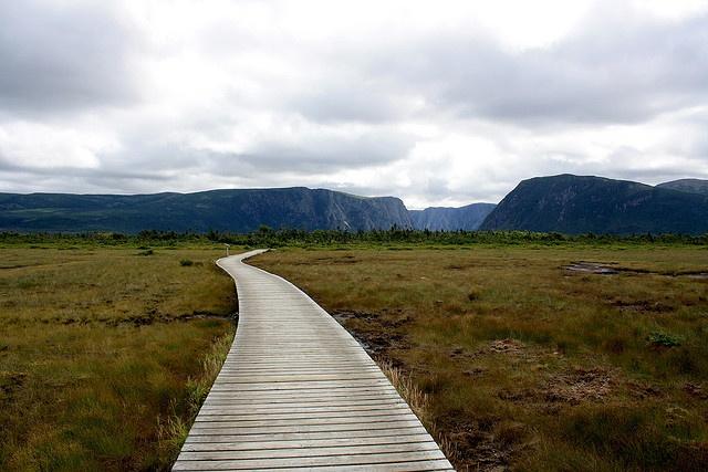Western Brook Pond, Newfoundland and Labrador, Canada.