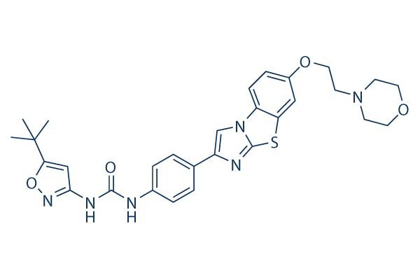 Quizartinib is an orally available small molecule with potential antineoplastic activity. Class III receptor tyrosine kinase inhibitor AC220 selectively inhibits class III receptor tyrosine kinases, including FMS-related tyrosine kinase 3 (FLT3/STK1), colony-stimulating factor 1 receptor (CSF1R/FMS), stem cell factor receptor (SCFR/KIT), and platelet derived growth factor receptors (PDGFRs), resulting in inhibition of ligand-independent leukemic cell proliferation and apoptosis.