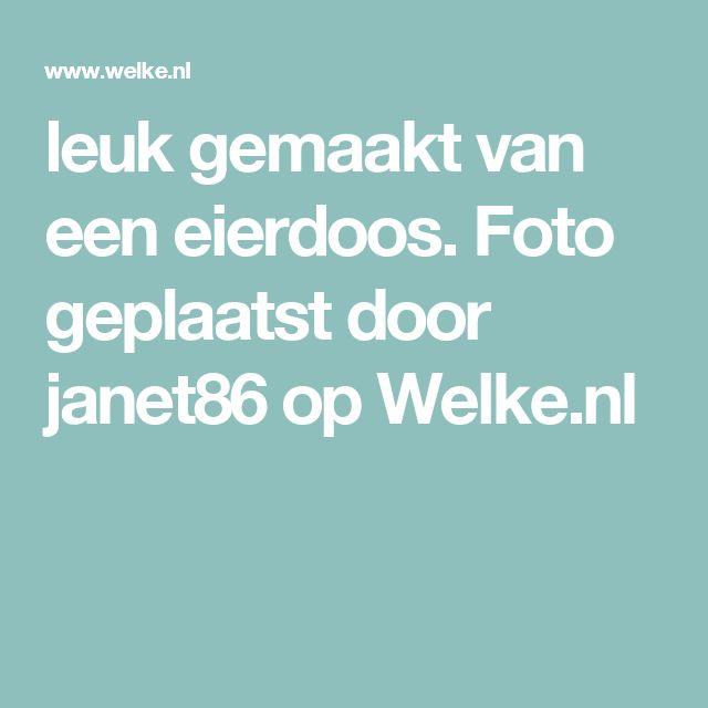 leuk gemaakt van een eierdoos. Foto geplaatst door janet86 op Welke.nl