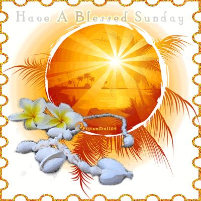 Have a blessed Sunday tropical days days of the week sunday weekdays blessed sunday sunday greeting sunday gif