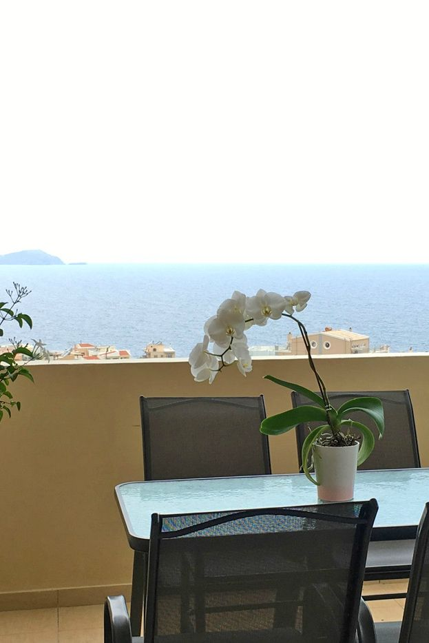 _Comfortable Apartment_ in Chania, Crete! For more visit our website: http://www.thehotel.gr/apartments