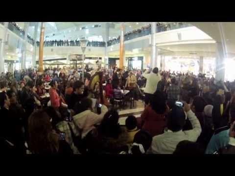 Orquesta Sinfónica de Xalapa Flash Mob. Jalapa, Veracruz, México.