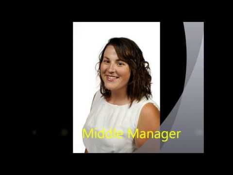 Different levels of management - Phoenix Consultants