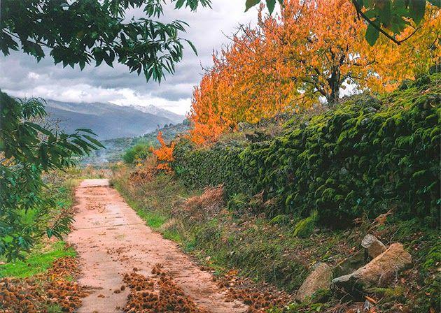 Mejores 52 im genes de paisajes oto ales en el valle del - Imagenes paisajes otonales ...