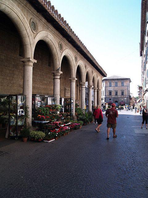 Fiorista Medici, Orvieto, Terni, Umbria, Italy