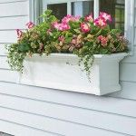 Beautiful And Practical Window Box Planter. By pbstudiopro.com