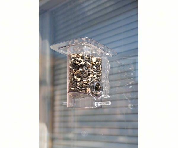 1000 Ideas About Window Bird Feeders On Pinterest