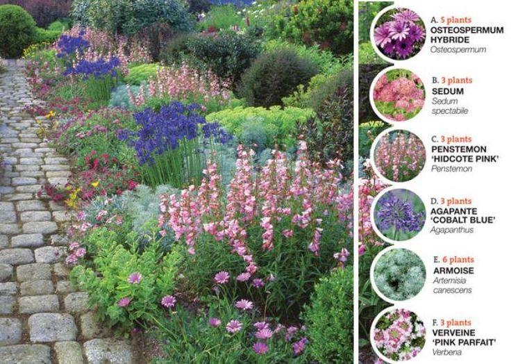 les 281 meilleures images propos de semis boutures plantation sur pinterest jardins. Black Bedroom Furniture Sets. Home Design Ideas