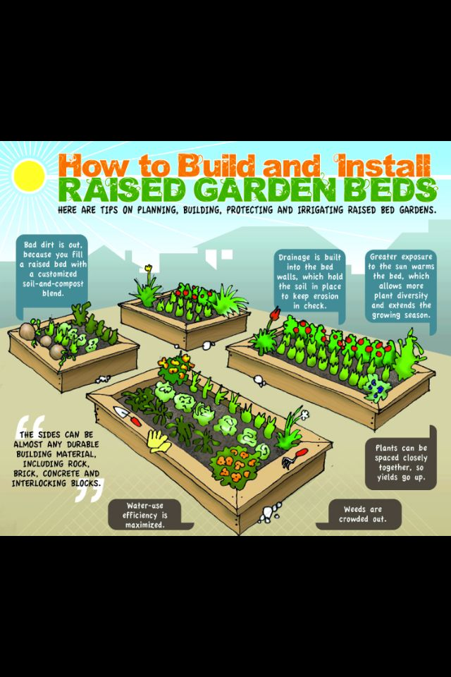 Raw for beauty--- raised garden bed