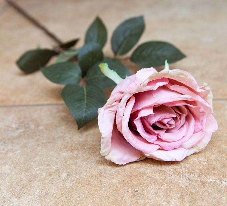 Rose Calista Dusty Pink 71cm