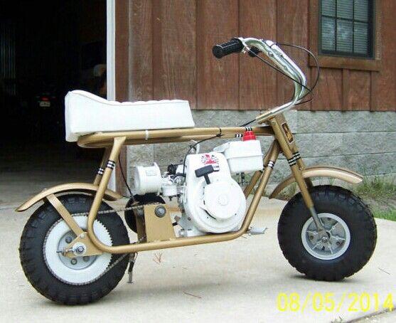 hornet minibike hooked on minibikes pinterest hornet. Black Bedroom Furniture Sets. Home Design Ideas
