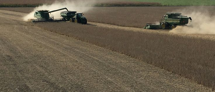 A look from above as two John Deere  combines and a tractor cut soybeans.