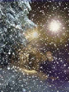Зимняя ночь - анимация на телефон №1370035