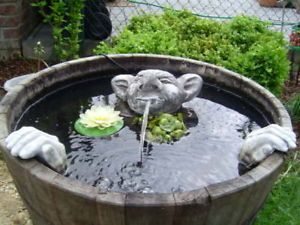 Wasserspeier