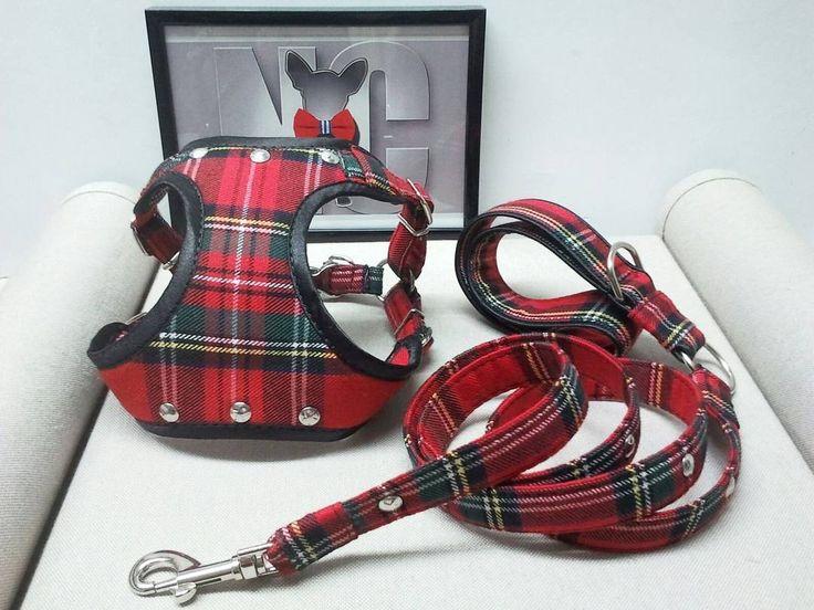 [ below]  Arnés de tipo pechera  confeccionado exclusivamente para @zeusthefreedog . [] Front harness crafted and customized for @zeusthefreedog .  #dogs #perros #arnes #harness #pechera #tartan #perrosdeinstagram #customized #instadog #chihuahua #shihtzu #frenchie #yorkie #teckel #piccolo #whippet #terrier #caniche #bulldog #pug