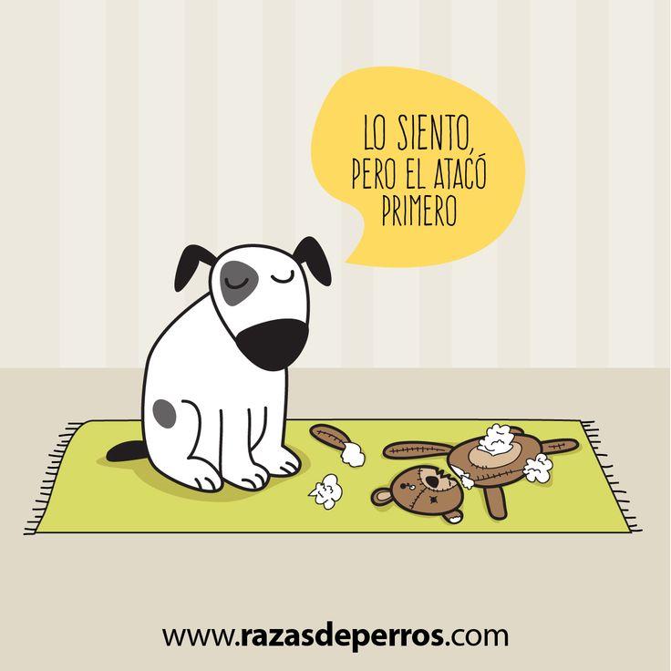 Desvio Creativo, Ilustracion de perros, como ven el mundo nuestros amigos perrunos
