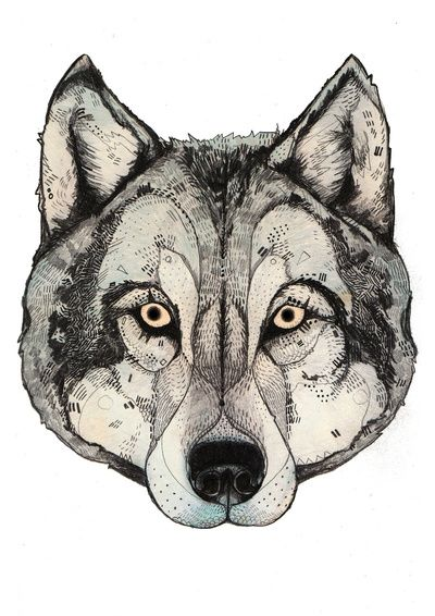 Wolf Mask Art Print by Sandra Dieckmann | Society6