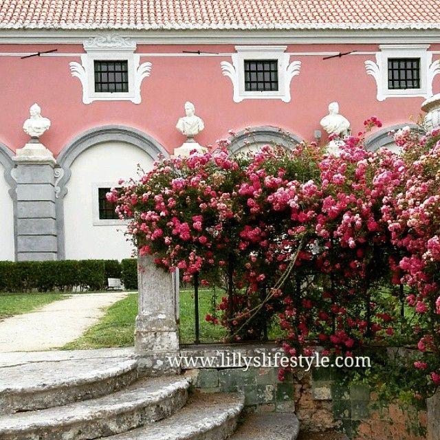 Avete letto il mio articolo sul festival di vino a Oeiras?  http://lillyslifestyle.com/2015/06/08/festival-del-vino-europeo-e-enoturismo-ad-oeiras/#lillyslifestyle #wine #palaciomarquespombal #Portugal